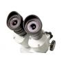 Микроскоп Levenhuk 3ST, бинокулярный