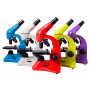 Микроскоп Levenhuk Rainbow 50L (5 цветов)
