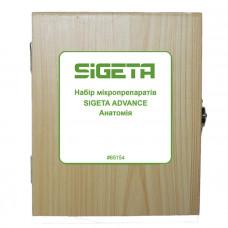 Набор микропрепаратов Sigeta Advance Анатомия (20 шт.)