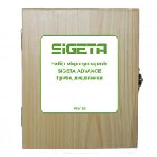 Набор микропрепаратов Sigeta Advance Грибы, лишайники (20 шт.)